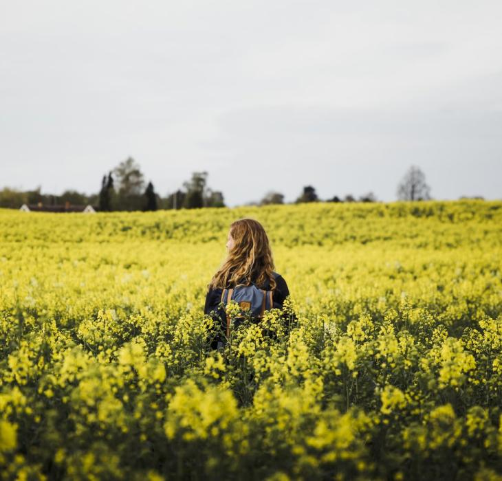 Woman walking in a field of bright yellow flowers